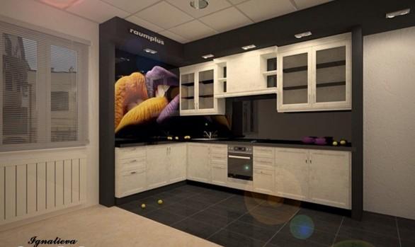 Дизайн-проект кухни для салона Raumplus